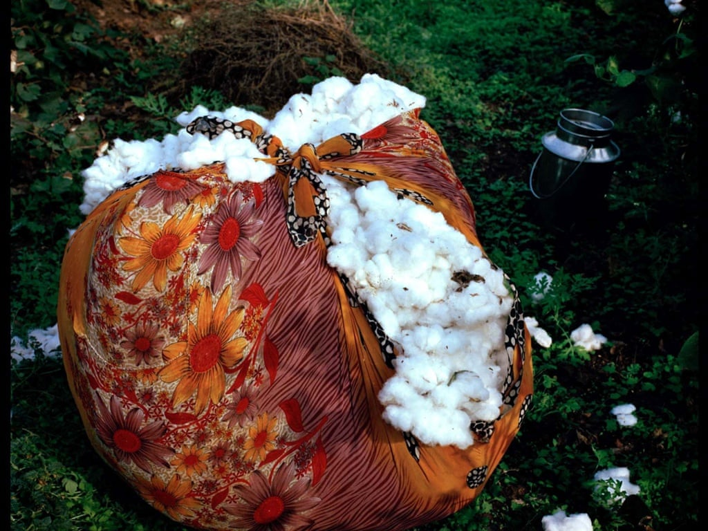 Image of a bale of cotton which was collected in India