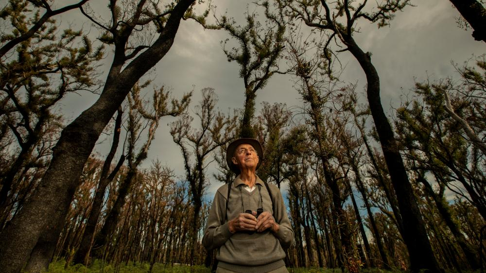 """""""What sort of a world would it be without birds?"""" asks Bob Semmens, an 87-year-old retired park ranger / Photograph by The Guardian."""