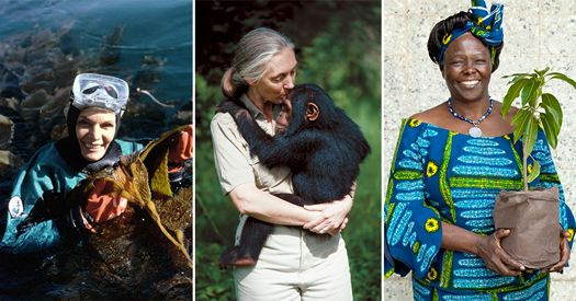 An image of three female environmentalist participating in conservation activities.