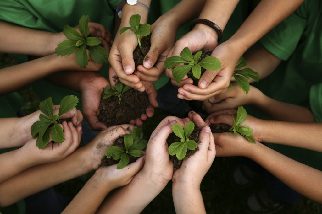 An image of many hands holding plants with soil in their palms.