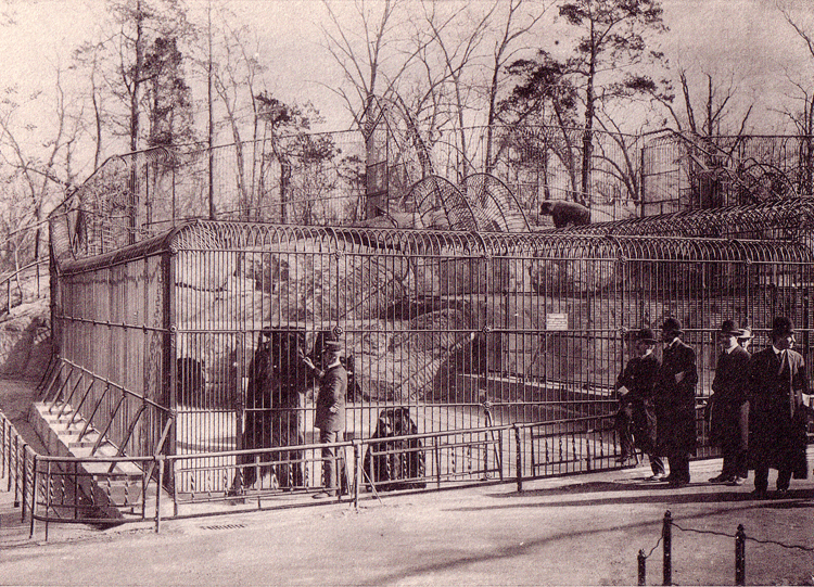 A vintage picture of visitors looking an bears held in iron cages in Central Park Zoo
