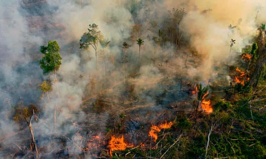 An image showing forest fire in the Amazon rainforests