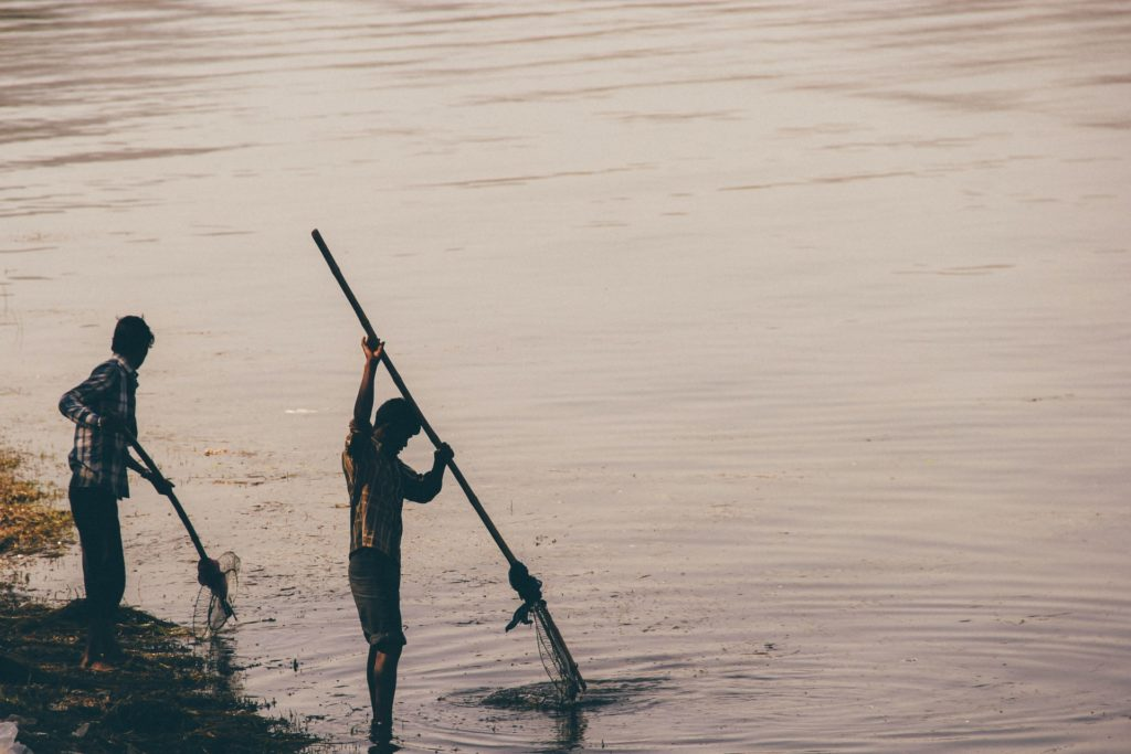 The image of local men fishing in the backwaters of the Sundarbans.